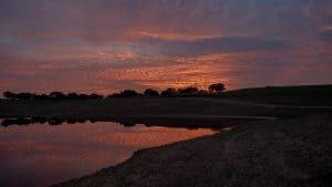 Hin und wieder zurück – Die Flucht aus der Algarve