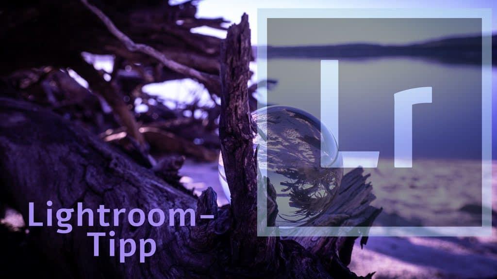 Gezielt die besten Fotos in Lightroom bearbeiten
