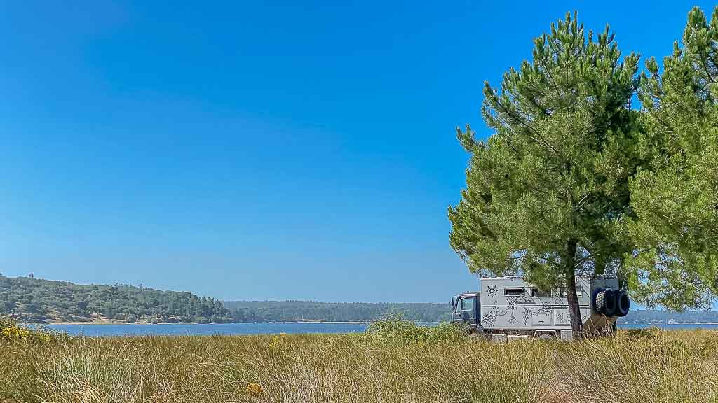 Black Pearl am Barragem de Montargil unter einer Pinie stehend