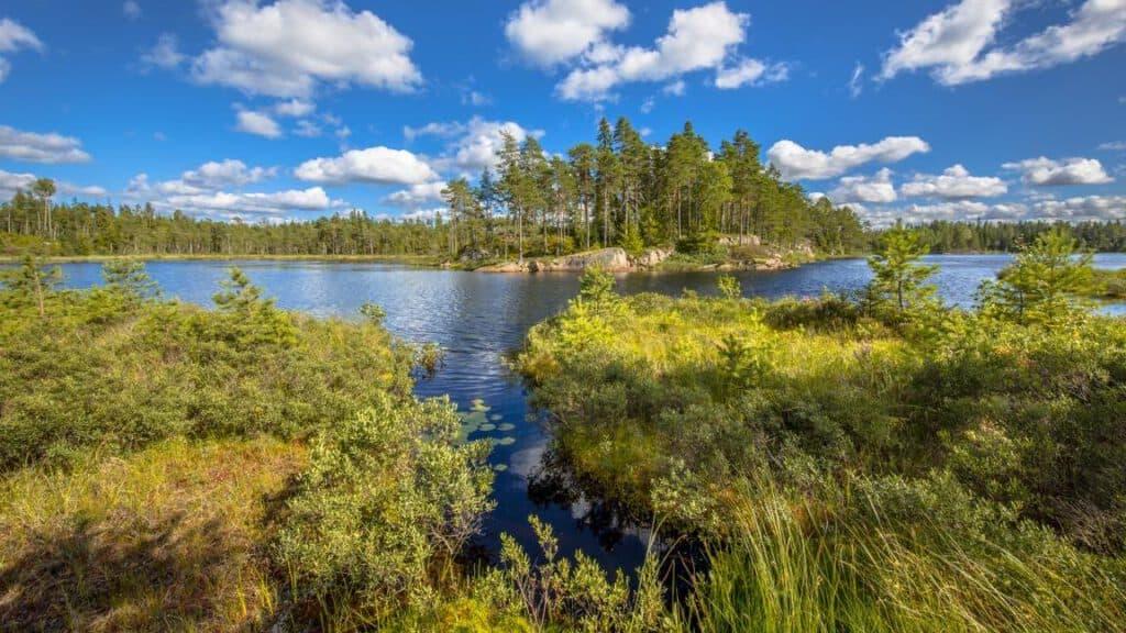 Lake in Glaskogen nature reserve Sweden